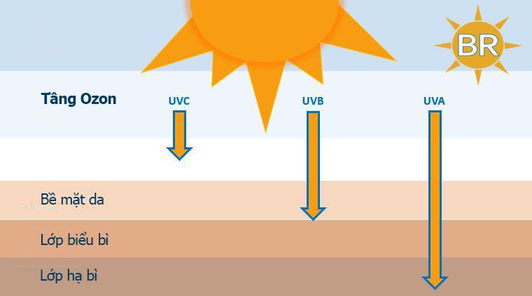 UV là gì? Tác hại UV